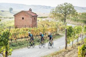 People cycling through vineyard